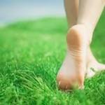 piedi bioener