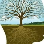 sistema-nervoso-autonomo-e-educação